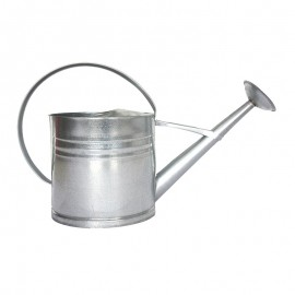 Arrosoir zinc 10L