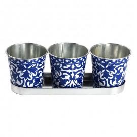 Lot de 3 pots avec une soucoupe