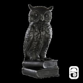 Chouette Sur Livre Ciree Noir - Statue