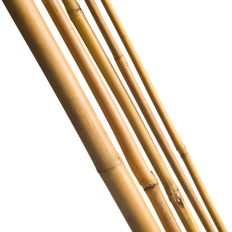5 Tuteurs H120cm en bambou