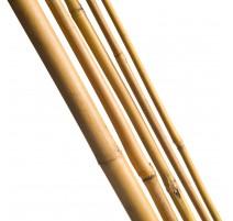 4 Tuteurs H150cm en bambou