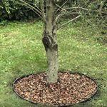 Installer une bordure de jardin