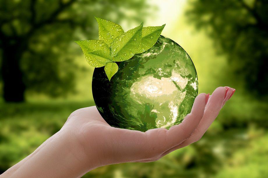 Jardiprotec préserve l'environnement