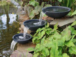 Décoration de bassin